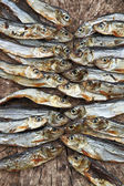 Plenty of small dried fishes on a stack — Stock Photo