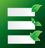 Banner med gröna blad — Stockvektor