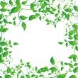 Green leaf — Stock Vector #41450013