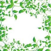 Hoja verde — Vector de stock
