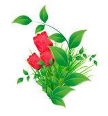 Penacho verde de la hierba con hojas y tulipanes — Vector de stock
