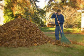 Raking Leaves Teen Boy in Blue Sweatshirt — Stock Photo