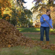 Raking Leaves Girl Next to Leaf Pile — Stock Photo