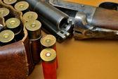 散弾銃とそのカートリッジ — ストック写真