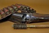 ружье и картриджей — Стоковое фото