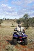 Gold mit prospektion im australischen busch — Stockfoto