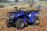 Oro recanti prospezione nel bush australiano — Foto Stock