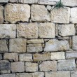 Fund of stone wall — Stock Photo
