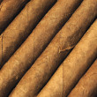 Cigars — Stock Photo #21253545