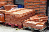 Manufacturing plant of bricks — Stock Photo