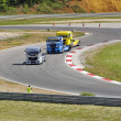 Stok fotoğraf: Grand Prix of France trucks 2013