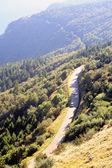 Mountain road — Stock Photo