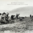 Old postcard In Vosges, harvesting potatoes — Foto Stock #37332441