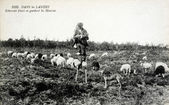 Old postcard in the Landes, Shepherd on stilts spinning wool bea — Stock Photo