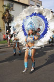 Carnival Ales — Stock Photo
