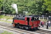The steam locomotive — Stock Photo