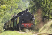 The tourist train from Anduze — Foto de Stock