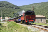 The tourist train from Anduze — Stock Photo