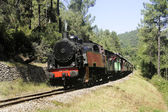 Little tourist steam train from Anduze — Stock Photo