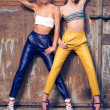 Two fashion girls against rusty doors — Stock Photo