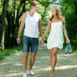 Young happy couple walking in green park holding hands — Stock Photo #15846137
