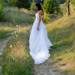 Young beautiful bride on green lawn passage — Stock Photo #18247837