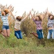 Four happy teenage friends — Stock Photo #18524723