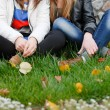Two teenage girl friends sitting on green grass - Stock Photo