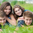 Four happy teenage friends lying together on green grass outdoors — Stock Photo #26034033