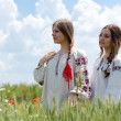 Two young happy women in traditional ukrainian dress in wheat field — Stock Photo #26966677