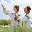 Two young happy women in traditional ukrainian dress in wheat field — Stock Photo #26966701