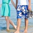 Young happy couple walking holding hands on seashore — Stock Photo #31205415