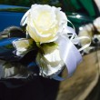 Beautiful wedding car decoration — Stock Photo