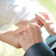 Happy newlywed couple holding hands — Stock Photo