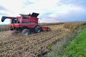 Récolte de maïs — Photo