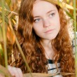 Stock Photo: Girl ooking out of reed