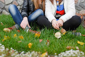 Friends sitting on green grass — Stock Photo