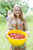 Strawberry picker — Stock Photo