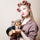 Closeup portrait on beautiful blond young woman with blue eyes having fun with curlers on her head and a dog in her arms looking up at copy space background picture — Stock Photo