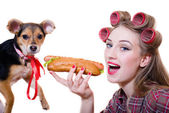 While adorable cute dog looking at camera pinup beautiful funny blond young woman with blue eyes & curlers having fun eating a hot dog & happy smiling on a white background closeup portrait image — Stock Photo