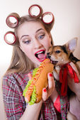 Funny pinup small cute dog & beautiful blond sexy young woman with curlers looking surprised having fun eating a hot-dog on a white background closeup portrait image — Stock Photo