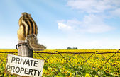 Chipmunk sits on a fence near sunflowers field — Stock Photo