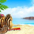 Chipmunks on the beach, honeymoon concept — Stock Photo #12673398