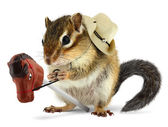 Funny chipmunk cowboy with stick horse — Stock Photo
