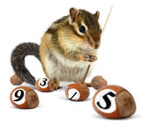 Funny chipmunk playing snooker — Stock Photo