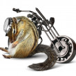 Постер, плакат: Funny chipmunk biker with motorcycle