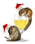 Funny drunk santas, chipmunks dress santa hat — Stockfoto