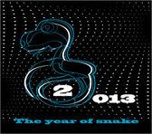 Snake new year card 2013 — Wektor stockowy