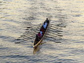 Rowers training on the river — Stock Photo