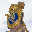 The golden emblem of Hesse in germany, the lion — ストック写真